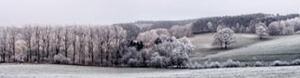 Winter Panorama by Ilona Wellmann