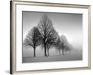 Winter Trees III by Ilona Wellmann