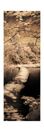 A Quiet Stroll II