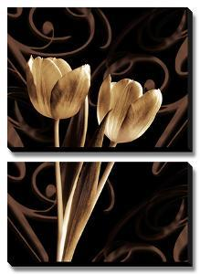 Floral Eloquence I by Ily Szilagyi