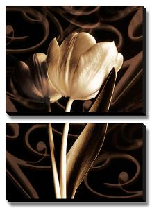 Floral Eloquence II by Ily Szilagyi