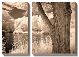 Lakefront View II by Ily Szilagyi