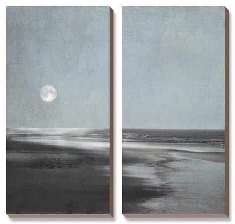 ily-szilagyi-moonlit-beach