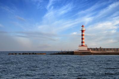 Ilyichevsk Port-vector_master-Photographic Print