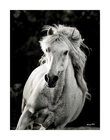 https://imgc.artprintimages.com/img/print/imagine-me-and-you_u-l-f92mro0.jpg?p=0