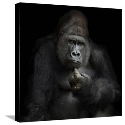 IMHO-Antje Wenner-Braun-Stretched Canvas Print
