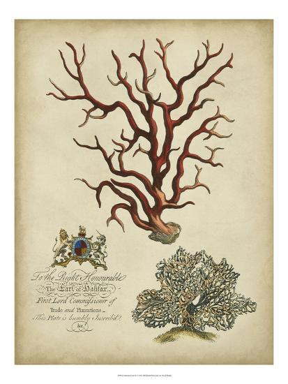 Imperial Coral IV--Art Print