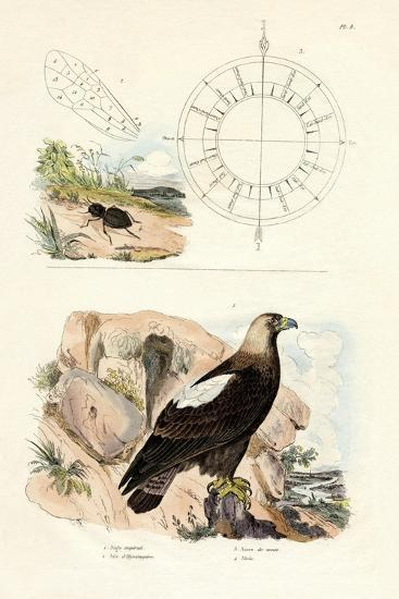 Imperial Eagle, 1833-39--Giclee Print