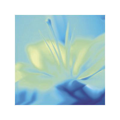 Impression Lily-Jane Ann Butler-Giclee Print
