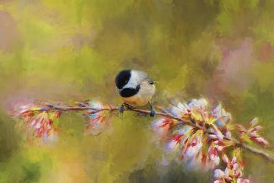 Impressionist Chickadee-Jai Johnson-Giclee Print