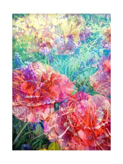 Impressionistic Blossom Meadow-Alaya Gadeh-Art Print