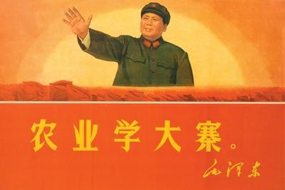 In Agriculture, Learn from Da Zhai, 1969--Giclee Print