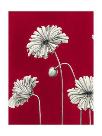 https://imgc.artprintimages.com/img/print/in-bloom-c-recolor_u-l-q1bmw7o0.jpg?p=0