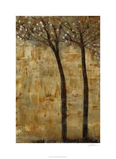 In Bloom II-Tim O'toole-Limited Edition