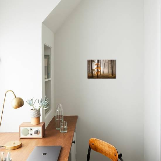 In November Light Photographic Print Franz Schumacher Art Com