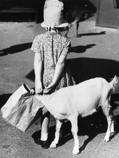 In the Bag-William Vanderson-Photographic Print