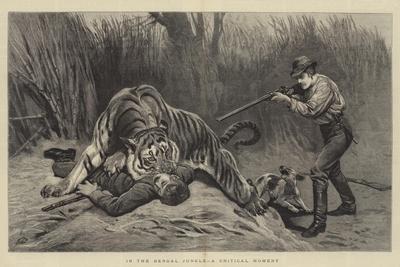 https://imgc.artprintimages.com/img/print/in-the-bengal-jungle-a-critical-moment_u-l-puoggs0.jpg?p=0