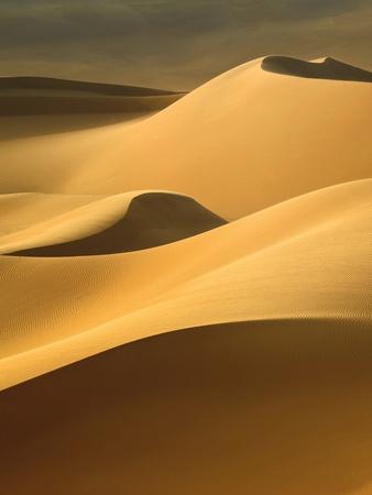 https://imgc.artprintimages.com/img/print/in-the-dunes-3_u-l-q1g63y70.jpg?p=0