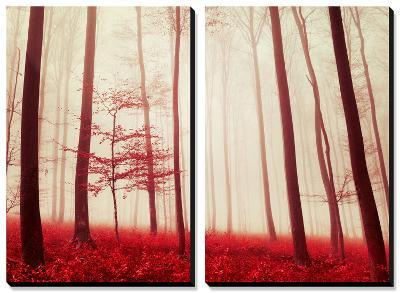 In the Footsteps of Fairy Tales-Philippe Sainte-Laudy-Canvas Art Set