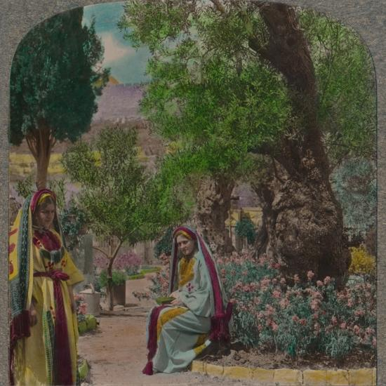 'In the Garden of Gethsemane', c1900-Unknown-Photographic Print