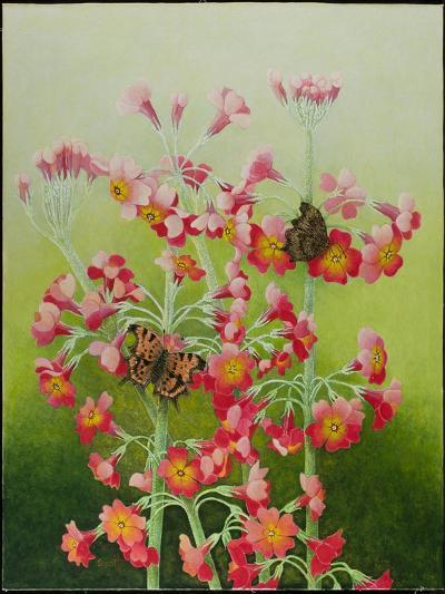 In the Pink, 2011-Pat Scott-Giclee Print