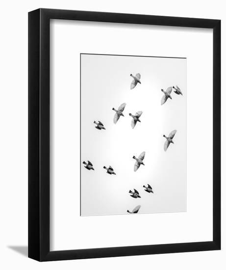 In the Sky 1-Design Fabrikken-Framed Photographic Print
