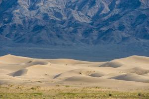 Khongor Sand Dunes, Govi Gurvan Saikhan National Park, Gobi Desert, South Mongolia. June 2015 by Inaki Relanzon