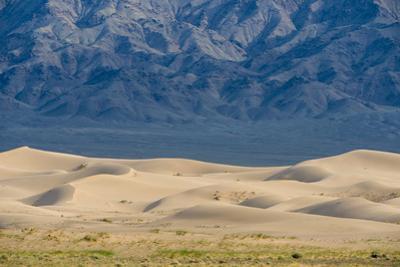 Khongor Sand Dunes, Govi Gurvan Saikhan National Park, Gobi Desert, South Mongolia. June 2015