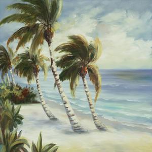 Tropical 4 by Inc DAG