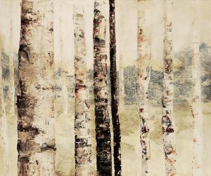 Woodland 6 by Inc DAG