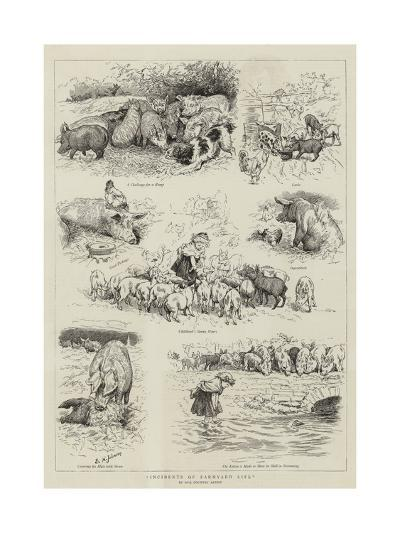 Incidents of Farmyard Life-Edward Killingworth Johnson-Giclee Print