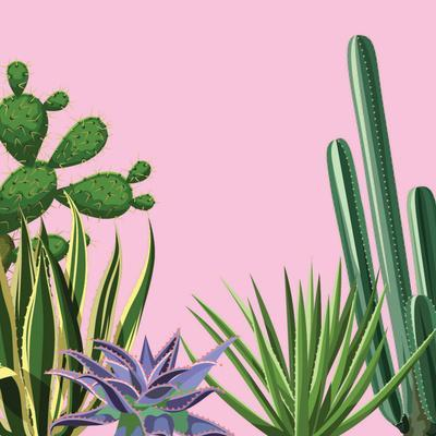 Background with Cactuses and Succulents Set. Plants of Desert.