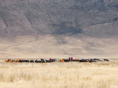 Incredible Maasai-Mathilde Guillemot-Photographic Print