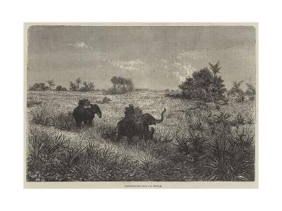 India and the Prince of Wales, Tiger-Shooting from the Howdah-Frederic Theodore Lix-Giclee Print