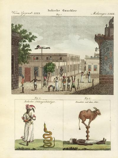 Indian Bateleurs--Giclee Print