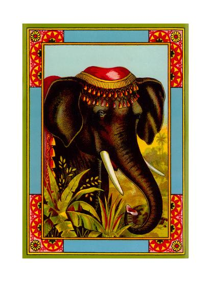 Indian Elephant with Beanie--Art Print