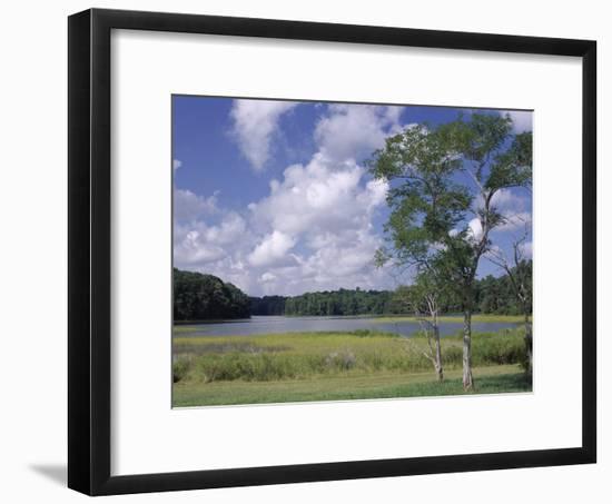 Indian Field Creek, on Colonial Highway, Near Williamsburg, Virginia, USA-Pearl Bucknall-Framed Photographic Print