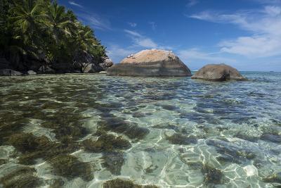 Indian Ocean, Seychelles, Mahe, St. Anne Marine NP, Moyenne Island-Cindy Miller Hopkins-Photographic Print