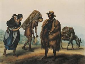 Indians Transporting Coal