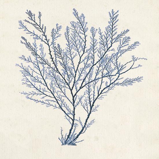 Indigo Algae II-Jennifer Goldberger-Art Print