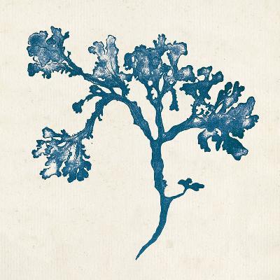 Indigo Algae IV-Jennifer Goldberger-Art Print