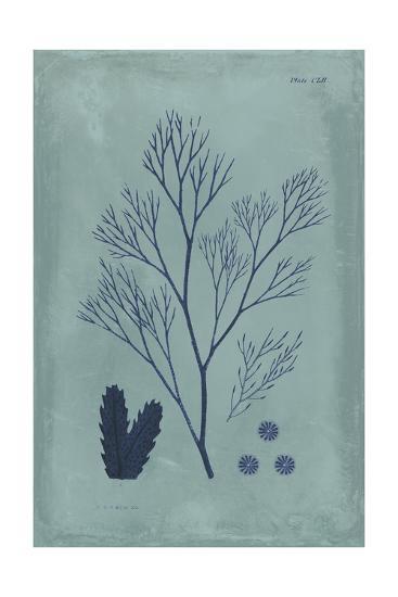 Indigo and Azure Seaweed V-Vision Studio-Art Print
