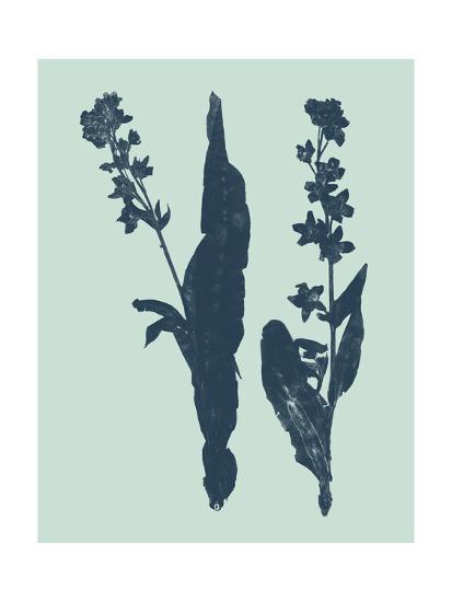 Indigo and Mint Botanical Study VIII-Vision Studio-Art Print