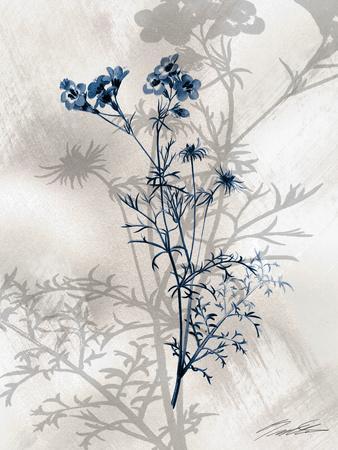 https://imgc.artprintimages.com/img/print/indigo-bloom-i_u-l-q1bgq570.jpg?p=0
