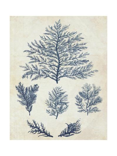Indigo Blue Seaweed 1 c-Fab Funky-Art Print