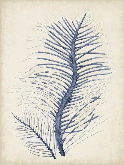 Indigo Coral V-Vision Studio-Art Print