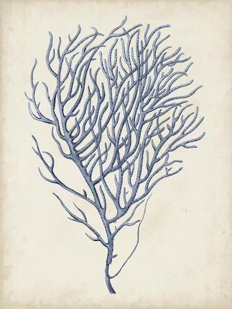 https://imgc.artprintimages.com/img/print/indigo-coral-vi_u-l-q1aoznp0.jpg?p=0