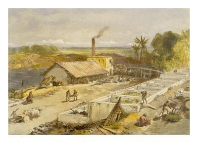 Indigo Factory - Bengal, from 'India Ancient and Modern', 1867 (Colour Litho)-William 'Crimea' Simpson-Giclee Print