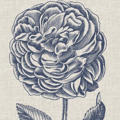 Indigo Floral on Linen V-Vision Studio-Art Print
