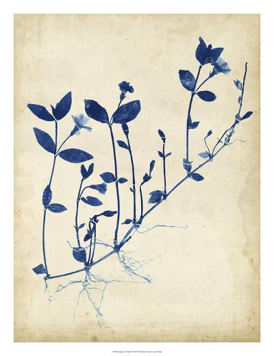 Indigo Leaf Study II-Vision Studio-Giclee Print